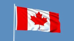 Photo of the Canadian Flag blowing in the wind, with a clear blue sky in the background.